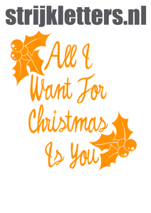 Vel Strijkletters All I Want For Christmas Flex Neon Oranje - afb. 1